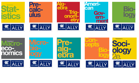 ally book covers